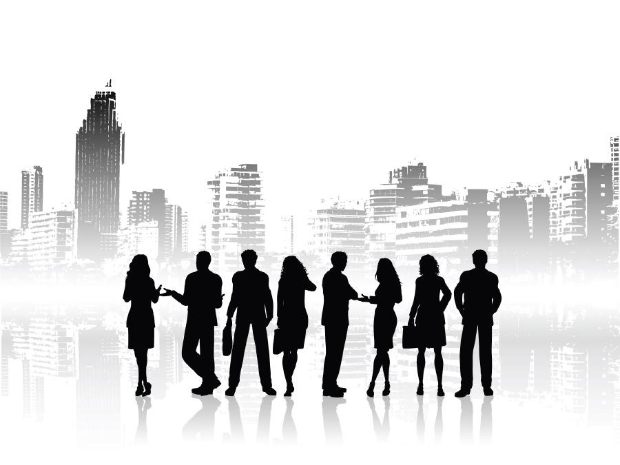 פגישת קונסורציום ראשונה - טמפוס 'איריס' 18-19/2/2013