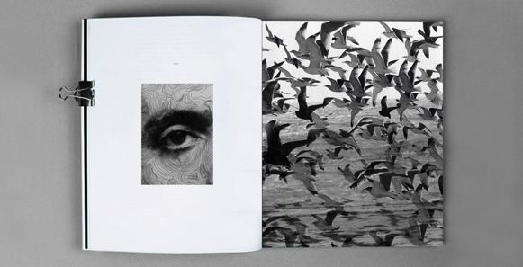 עבודת הגמר של ענבל לפידות - תקשורת חזותית