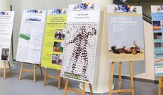 """יום המחקר והיצירה הראשון, ביוזמת רשות המו""""פ, התקיים ב- HIT"""